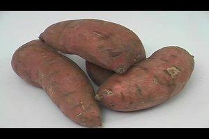 Süßkartoffel richtig zubereiten