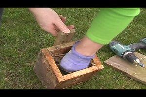 Vogelnistkasten selber bauen - so wird's gemacht