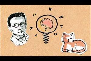 Schrödingers Katze einfach erklärt