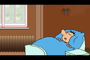 Wie viele Spinnen isst ein Mensch im Schlaf? - So können Sie Studien überprüfen