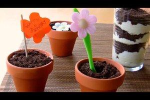 Oreo-Kekse im Blumentopf - ein lecker-lustiges Geburtstagsgeschenk