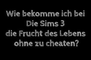 Sims 3: Frucht des Lebens ohne cheaten bekommen