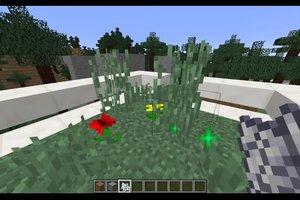 In Minecraft Gras wachsen lassen - so klappt's