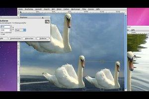 Fotomontage selber machen kostenlos - so geht´s mit GIMP