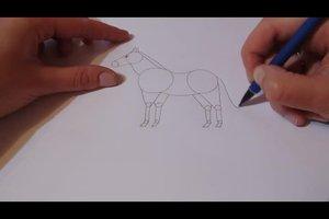 Pferd malen - so geht's