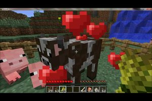 Tiere fangen in Minecraft  - so geht's