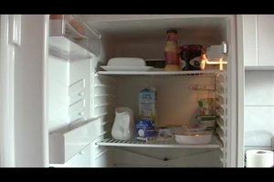 Kühlschrank richtig einräumen - Anleitung für Standkühlschrank