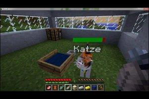 Bei Minecraft Katzen zähmen - so klappt´s