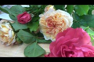 Rosen und Lavendel - so gelingt das Blumengesteck