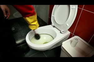 Klobrille reinigen - so machen Sie es richtig