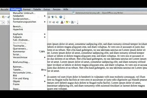 Bei OpenOffice die Seitennummerierung ab Seite 2 einstellen - so geht's