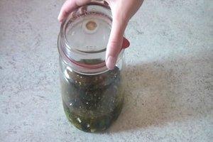 Anleitung - Oliven einlegen