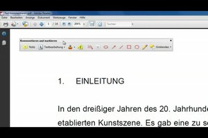 Adobe Reader 9 - kommentieren aktivieren