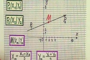 Mittelpunkt eines Vektors berechnen - so geht's