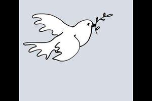 Weiße Tauben - Bedeutung der Symbolik