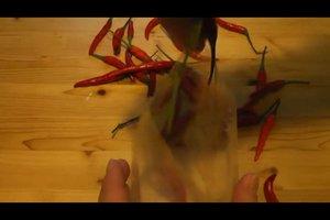 Chilis haltbar machen - so geht's eingelegt im Glas