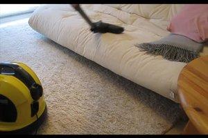 Flöhe in der Wohnung wirksam bekämpfen - einfache Hausmittel