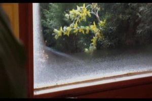 Kondenswasser am Fenster vermeiden - so geht's