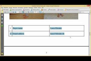 Text aus PDF kopieren - so funktioniert's