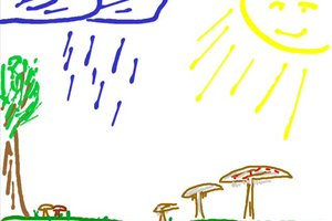Pilzwetter - so werden Sie im Wald fündig