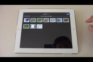 iPad: Welcher Ordner Bilder speichert - so verwalten Sie Ihre Fotos
