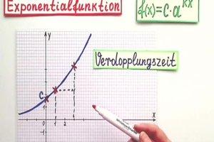 Den Wachstumsfaktor berechnen - so geht's exponentiell