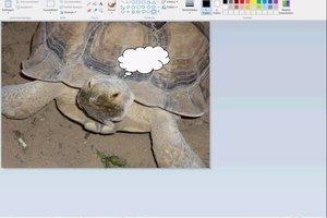 Sprechblase in Bild einfügen - so gelingt es am PC