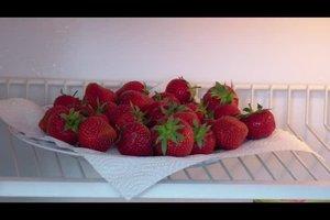 Erdbeeren im Kühlschrank aufbewahren - das sollten Sie beachten