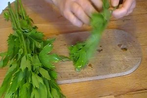 Liebstöckel konservieren - das Gewürzkraut haltbar machen