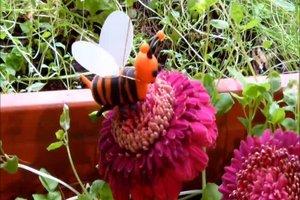 Beispiel für Symbiose - von Bienen und Blumen oder Ameisen und Läusen