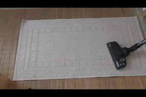 Motten im Teppich bekämpfen - mit diesen Hausmitteln klappt's
