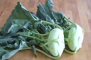 Kohlrabiblätter essen - leckere Zubereitungsmöglichkeiten