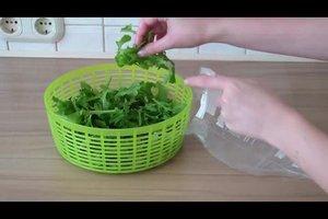 Rucola lagern - so bleibt der Salat frisch