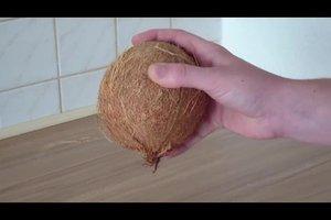 Eine Kokosnuss aufbewahren - so lagern Sie sie richtig