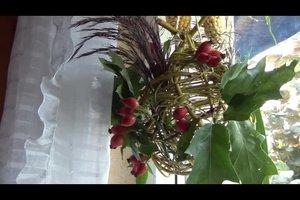 Fensterdeko für den Herbst - Ideen zum Basteln mit Naturmaterialien