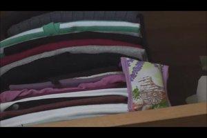 Kleidermotten loswerden - so geht's