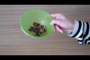 Pilze kochen - darauf sollten Sie achten
