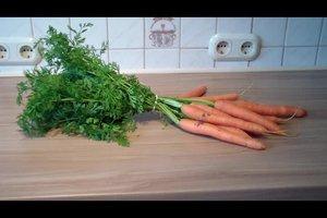 Karotten lagern - so bewahrt man Wurzelgemüse richtig auf