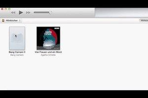 So können Sie Hörbücher in iTunes anzeigen