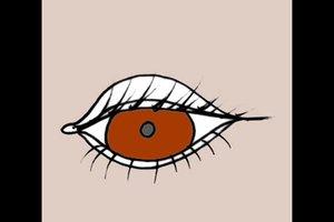 Bedeutung der Augenfarben - Wissenswertes