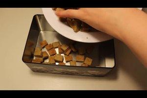Katzenplätzchen selber backen - zwei einfache Rezepte