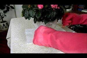 Pflanzen winterfest einpacken - so gelingt's