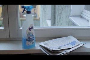 Fenster putzen mit Zeitung - so geht's