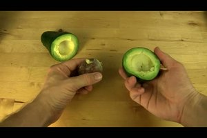 Avocadokern zum Keimen bringen - so klappt´s