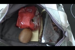 Im Flugzeug Lebensmittel im Handgepäck mitführen - so packen Sie richtig