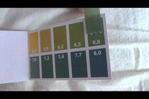 PH-Wert-Messung - so testen Sie Ihr Leitungswasser